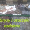 Zdjęcie: Grysy i otaczaki ozdobne od 18 zł za 25 kg